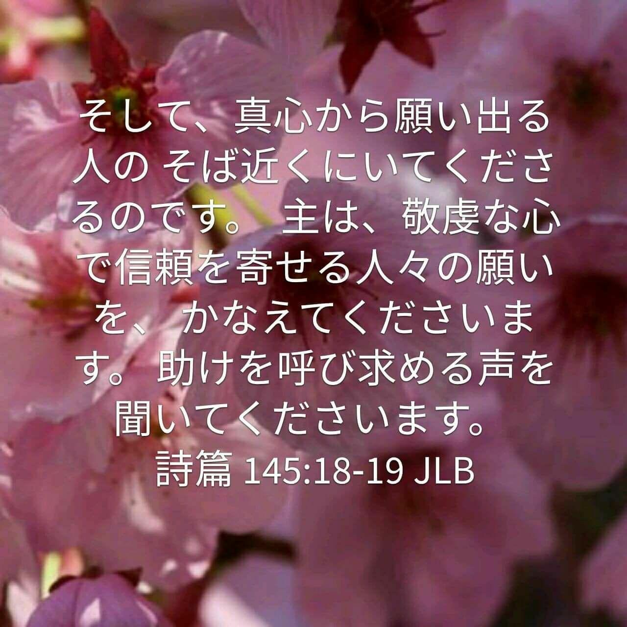 こんばんは(^-^)/